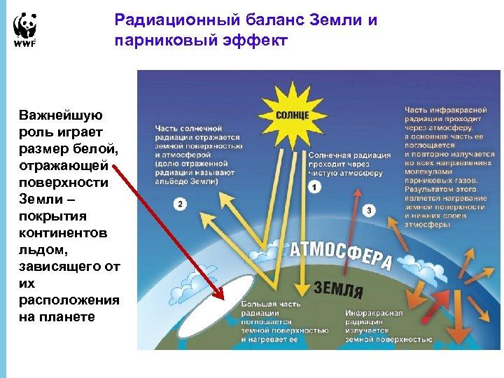 Радиационный баланс Земли и парниковый эффект Важнейшую роль играет размер белой, отражающей поверхности Земли
