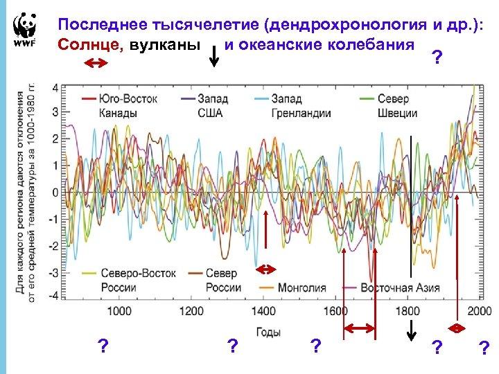 Последнее тысячелетие (дендрохронология и др. ): Солнце, вулканы и океанские колебания ? ? ?