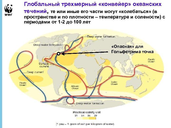 Глобальный трехмерный «конвейер» океанских течений, те или иные его части могут «колебаться» (в пространстве
