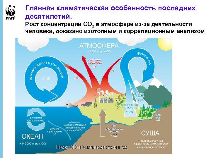 Главная климатическая особенность последних десятилетий. Рост концентрации СО 2 в атмосфере из-за деятельности человека,