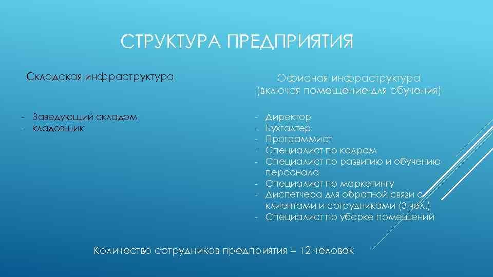 СТРУКТУРА ПРЕДПРИЯТИЯ Складская инфраструктура - Заведующий складом - кладовщик Офисная инфраструктура (включая помещение для