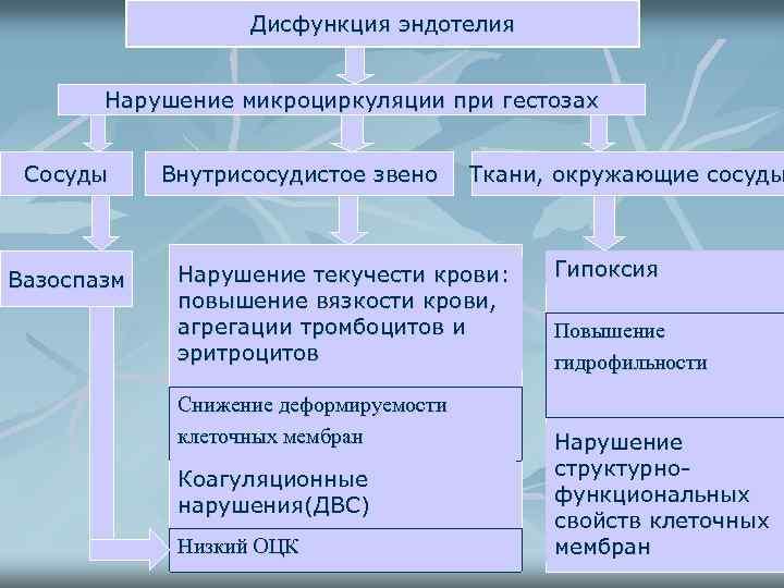 Дисфункция эндотелия Нарушение микроциркуляции при гестозах Сосуды Вазоспазм Внутрисосудистое звено Ткани, окружающие сосуды Нарушение