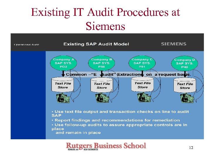 Existing IT Audit Procedures at Siemens 12