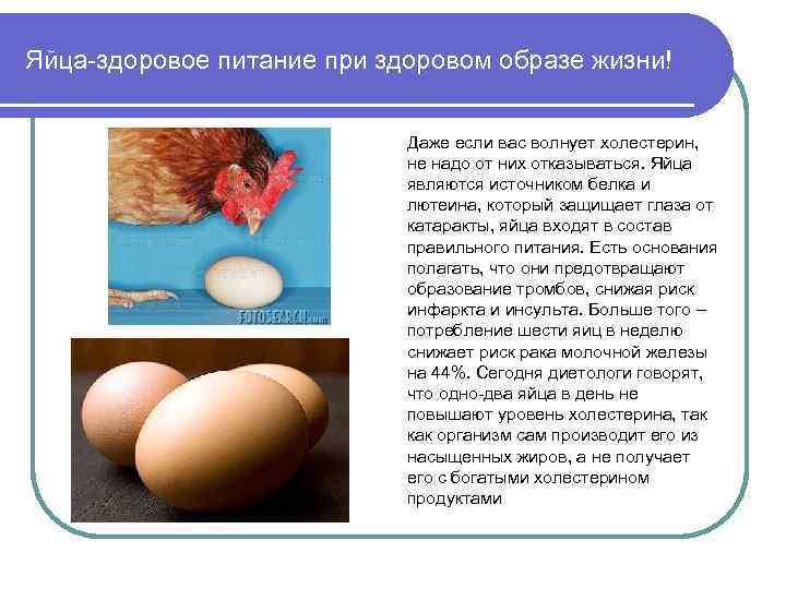 Яйца-здоровое питание при здоровом образе жизни! Даже если вас волнует холестерин, не надо от