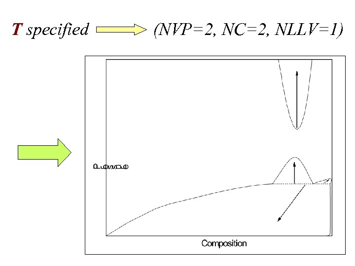 T specified (NVP=2, NC=2, NLLV=1)