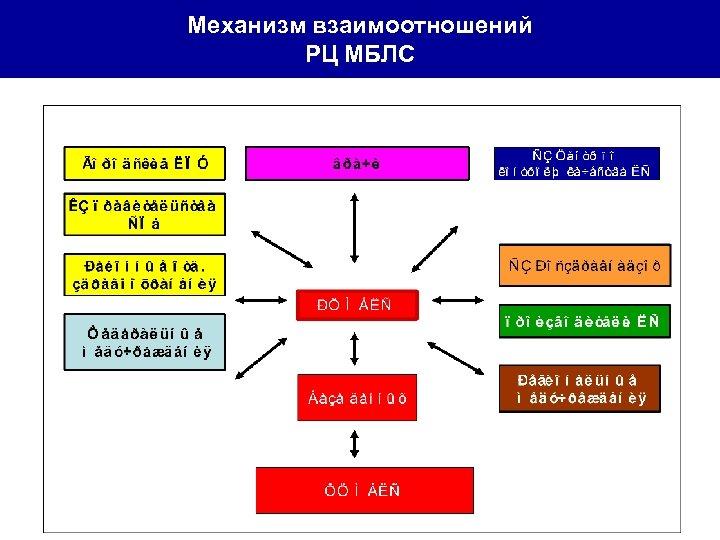Механизм взаимоотношений РЦ МБЛС
