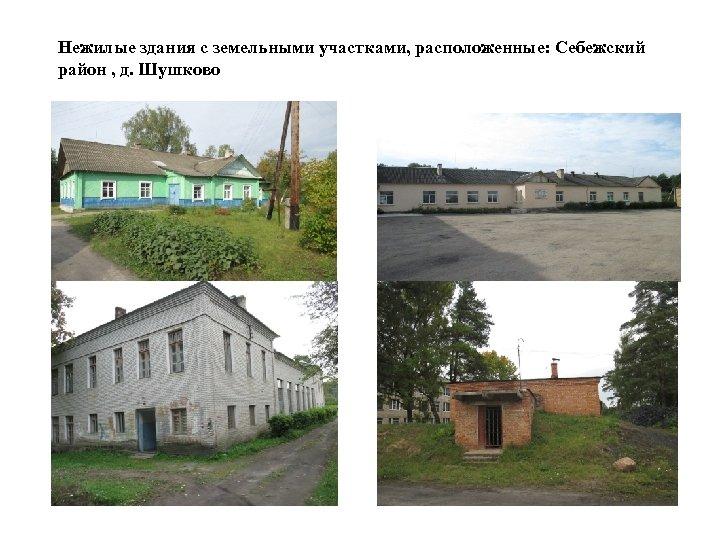 Нежилые здания с земельными участками, расположенные: Себежский район , д. Шушково