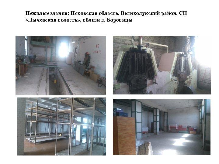 Нежилые здания: Псковская область, Великолукский район, СП «Лычевская волость» , вблизи д. Боровицы