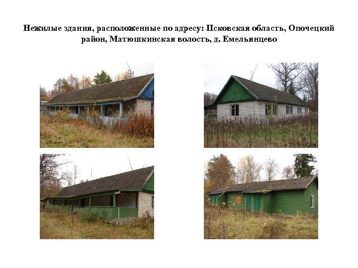 Нежилые здания, расположенные по адресу: Псковская область, Опочецкий район, Матюшкинская волость, д. Емельянцево