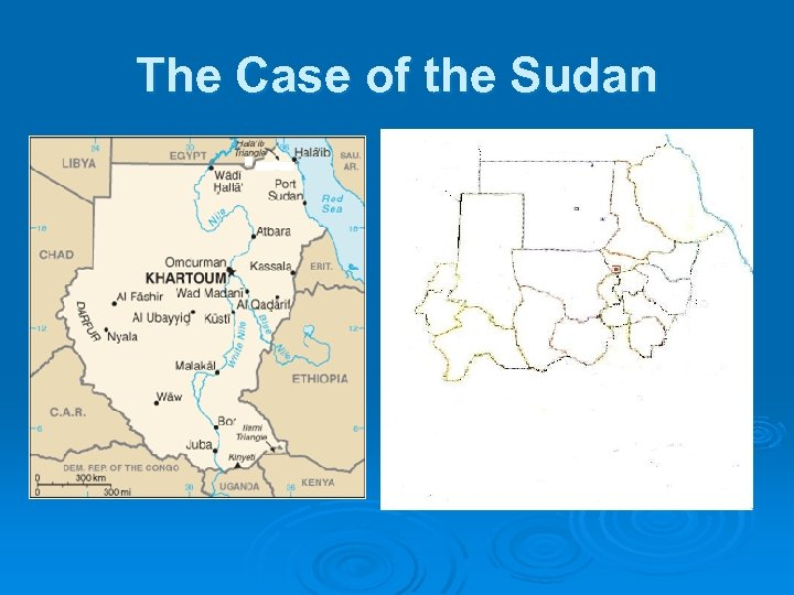 The Case of the Sudan
