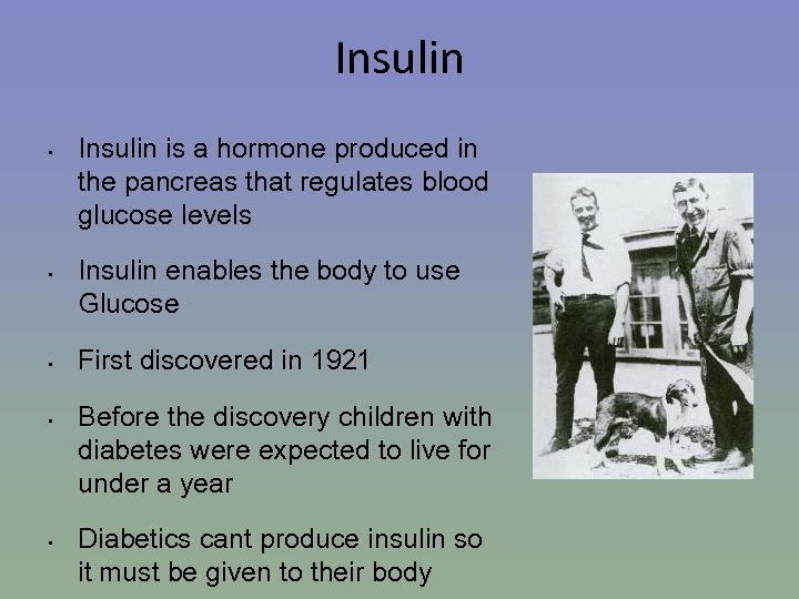 Insulin • • • Insulin is a hormone produced in the pancreas that regulates