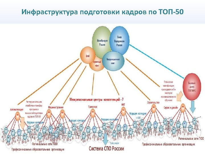 Инфраструктура подготовки кадров по ТОП-50