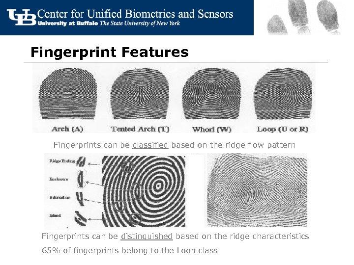 Fingerprint Features Fingerprints can be classified based on the ridge flow pattern Fingerprints can