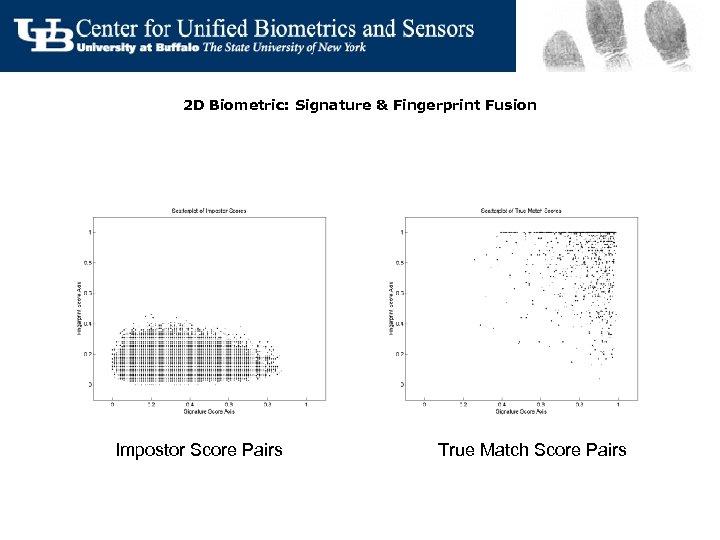 2 D Biometric: Signature & Fingerprint Fusion Impostor Score Pairs True Match Score Pairs
