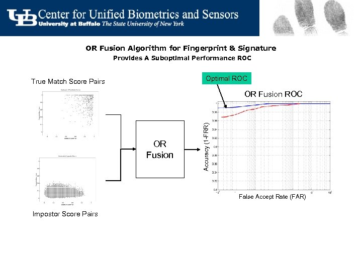 OR Fusion Algorithm for Fingerprint & Signature Provides A Suboptimal Performance ROC Optimal ROC