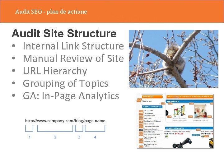 Audit SEO - plan de actiune Audit Site Structure • Internal Link Structure •