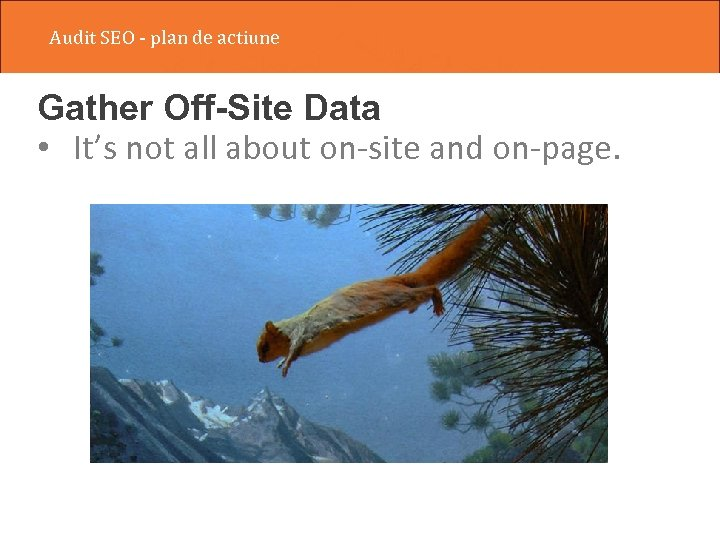 Audit SEO - plan de actiune Gather Off-Site Data • It's not all about