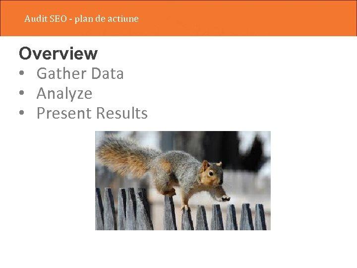 Audit SEO - plan de actiune Overview • Gather Data • Analyze • Present