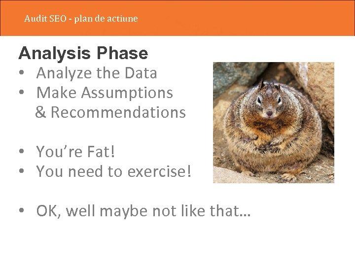 Audit SEO - plan de actiune Analysis Phase • Analyze the Data • Make