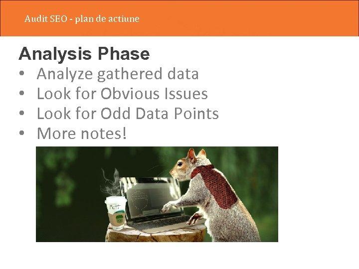 Audit SEO - plan de actiune Analysis Phase • Analyze gathered data • Look