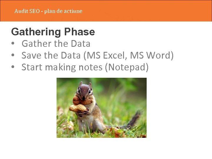 Audit SEO - plan de actiune Gathering Phase • Gather the Data • Save