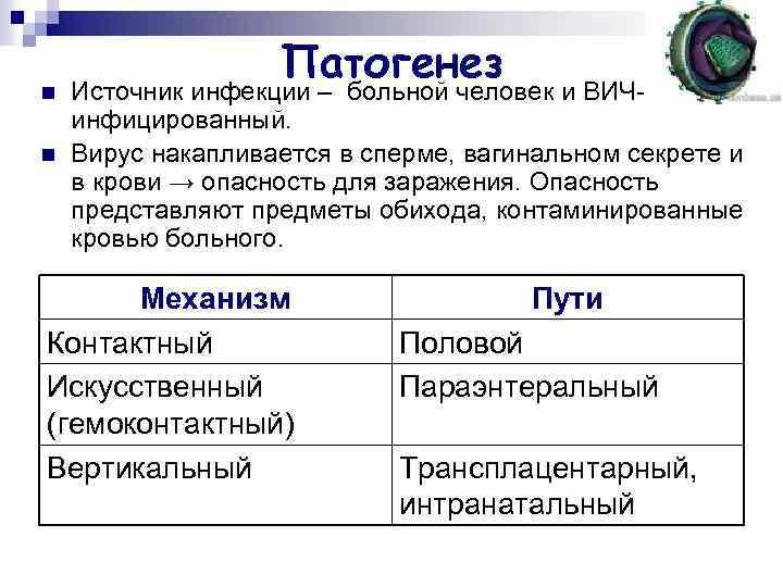 n n Патогенез Источник инфекции – больной человек и ВИЧинфицированный. Вирус накапливается в сперме,