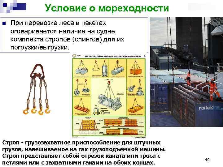 Условие о мореходности n При перевозке леса в пакетах оговаривается наличие на судне комплекта