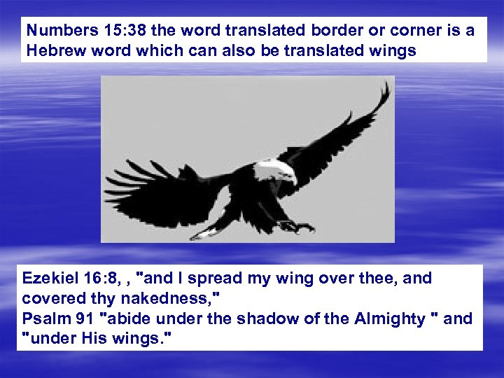 Numbers 15: 38 the word translated border or corner is a Hebrew word which