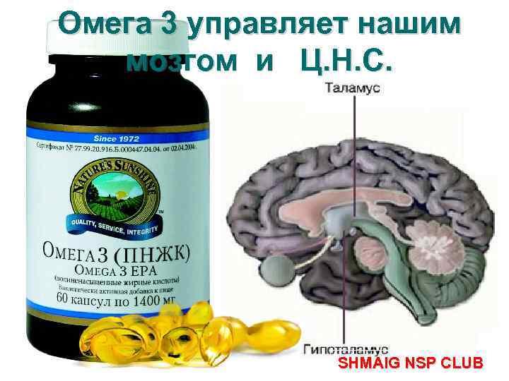 Омега 3 управляет нашим мозгом и Ц. Н. С. SHMAIG NSP CLUB