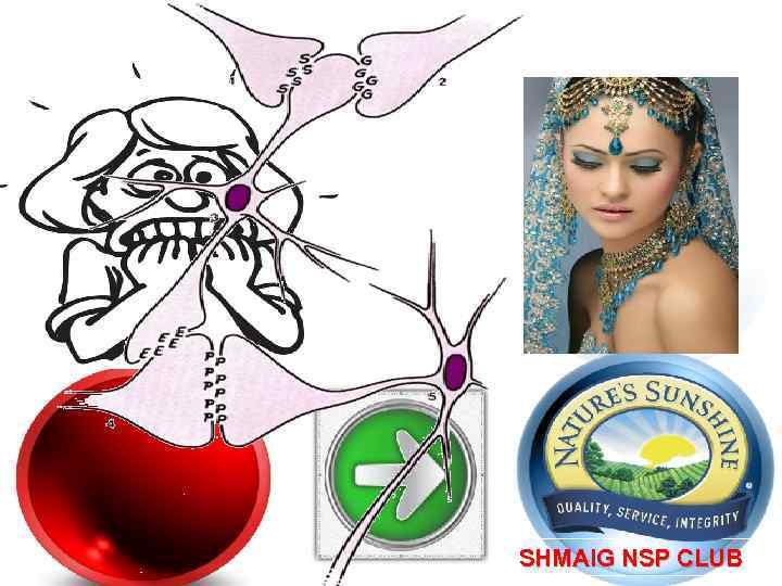 SHMAIG NSP CLUB