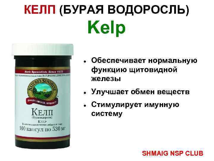 КЕЛП (БУРАЯ ВОДОРОСЛЬ) Kelp Обеспечивает нормальную функцию щитовидной железы Улучшает обмен веществ Стимулирует имунную