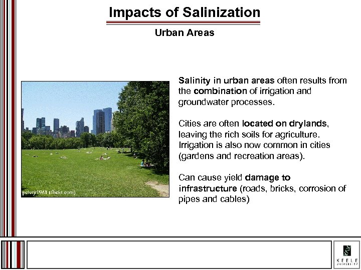 Impacts of Salinization Urban Areas Salinity in urban areas often results from the combination