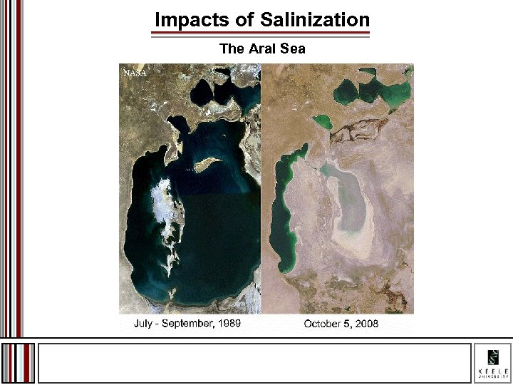 Impacts of Salinization The Aral Sea
