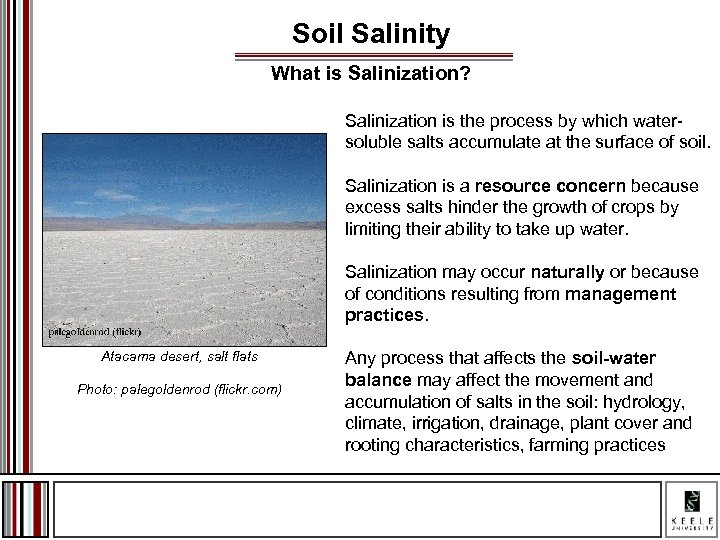 Soil Salinity What is Salinization? Salinization is the process by which watersoluble salts accumulate