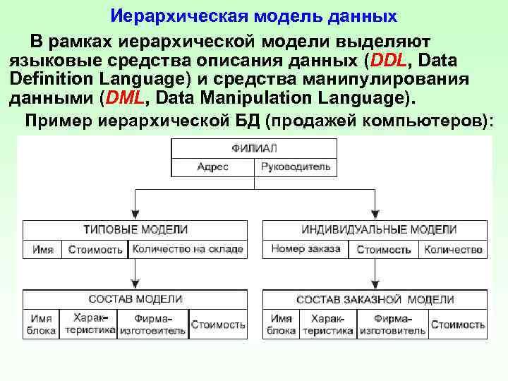 Иерархическая модель данных В рамках иерархической модели выделяют языковые средства описания данных (DDL, Data