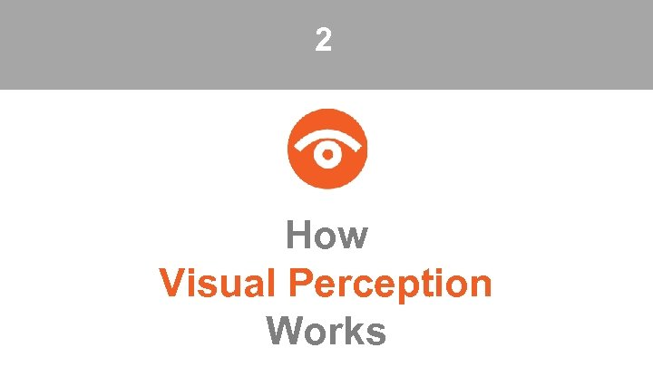 2 How Visual Perception Works