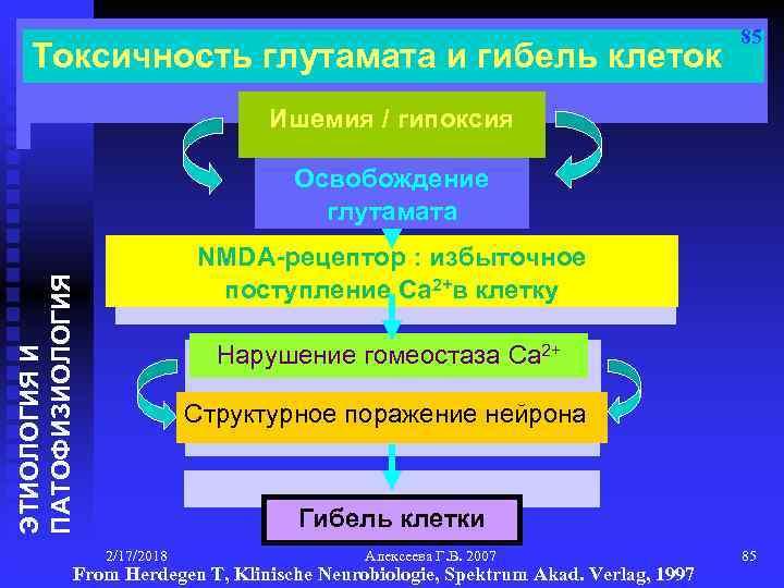 Токсичность глутамата и гибель клеток 85 Ишемия / гипоксия Освобождение глутамата ЭТИОЛОГИЯ И ПАТОФИЗИОЛОГИЯ