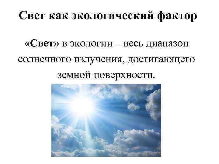 Свет как экологический фактор «Свет» в экологии – весь диапазон солнечного излучения, достигающего земной