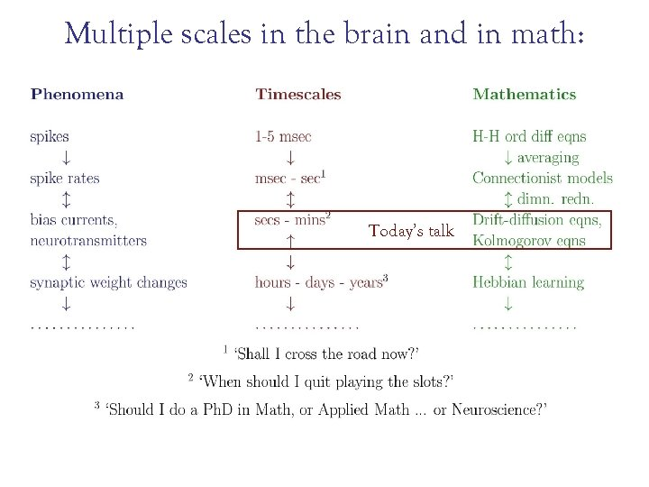 Multiple scales in the brain and in math: Today's talk