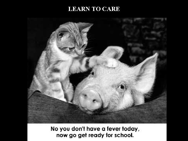 LEARN TO CARE
