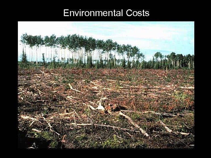 Environmental Costs