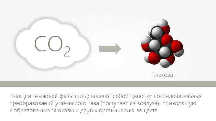 CO 2 Глюкоза м Реакции темновой фазы представляют собой цепочку последовательных преобразований углекислого газа