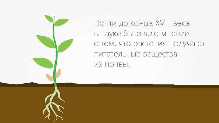 Почти до конца XVIII века в науке бытовало мнение о том, что растения получают