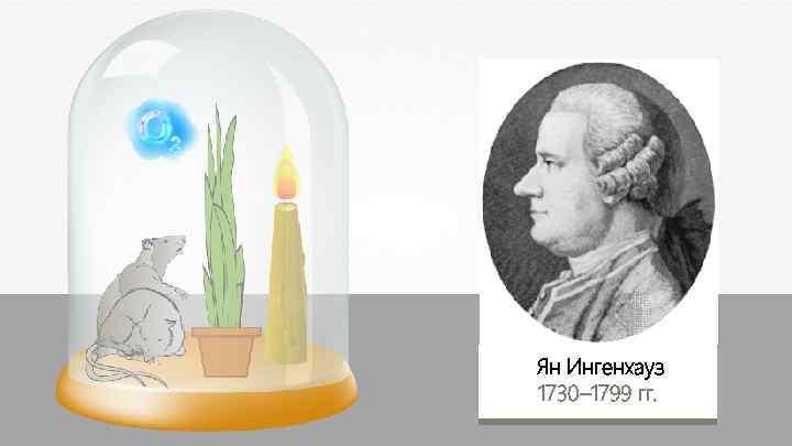 Ян Ингенхауз 1730– 1799 гг.