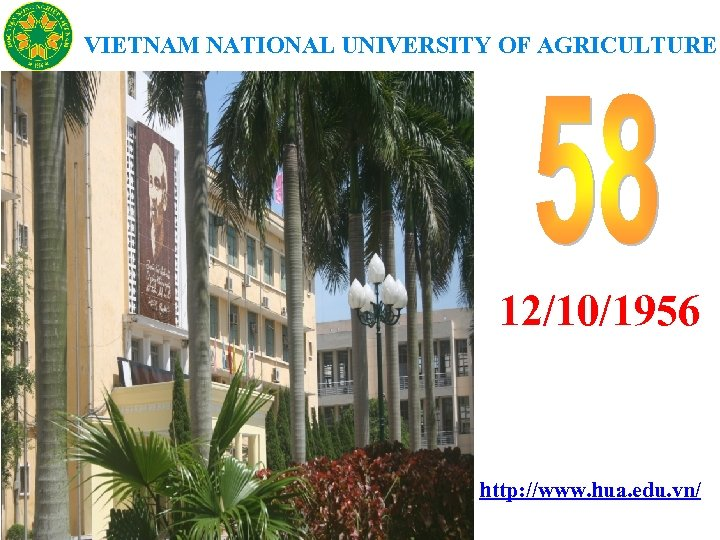 VIETNAM NATIONAL UNIVERSITY OF AGRICULTURE 12/10/1956 http: //www. hua. edu. vn/