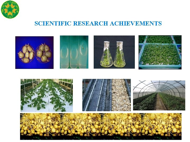 SCIENTIFIC RESEARCH ACHIEVEMENTS