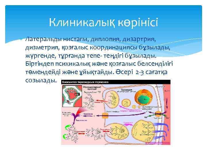 Клиникалық көрінісі Латеральды нистагм, диплопия, дизартрия, дизметрия, қозғалыс координациясы бұзылады, жүргенде, тұрғанда тепе- теңдігі