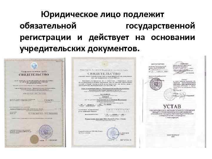 Юридическое лицо подлежит обязательной государственной регистрации и действует на основании учредительских документов.