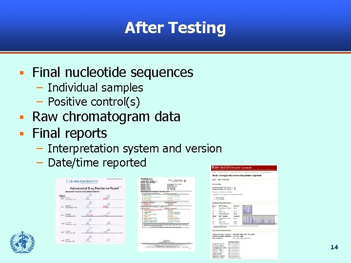 After Testing § Final nucleotide sequences – Individual samples – Positive control(s) § §