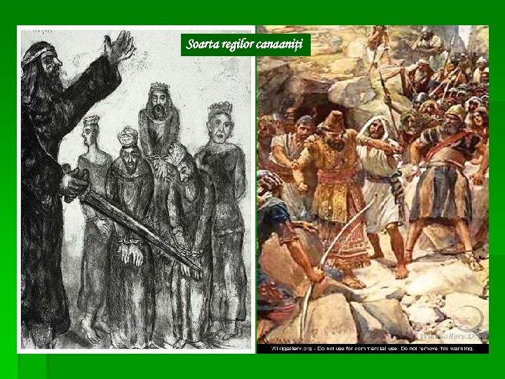 Soarta regilor canaaniţi